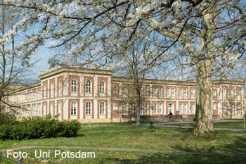 der studiengang psychologie - Potsdam Uni Bewerbung